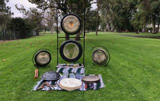 sound healing nature sally tabib